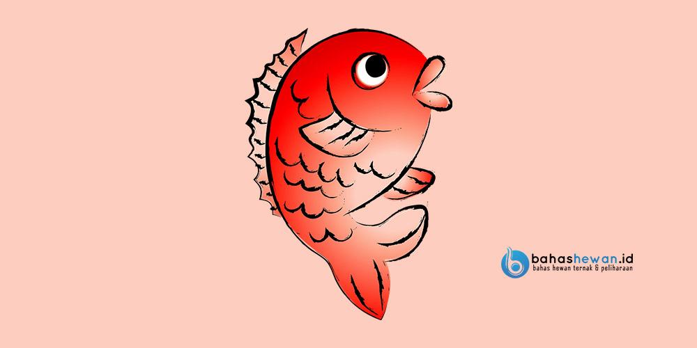 Ikan beracun di laut
